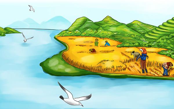 海岛大米插画与包装