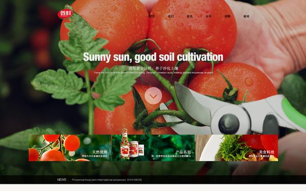 普罗旺斯食品网站前端制作