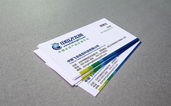 中国飞龙网品牌设计