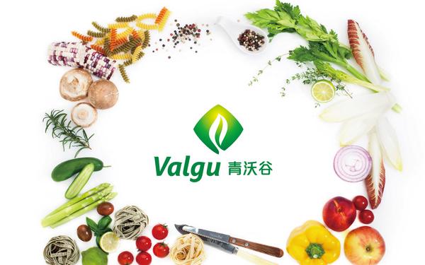 Valgu 青沃谷现代农业