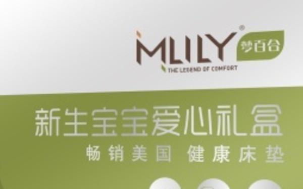 MLILY梦百合店铺规划+包装设计