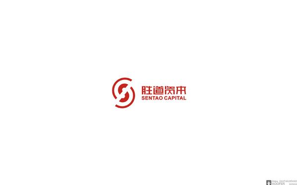 胜道资本 品牌设计/LOGO设计/VI设计