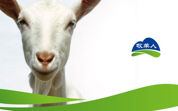 天津牧羊人乳业品牌设计