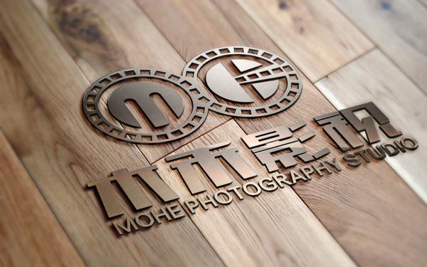 禾影视传媒有限责任公司  logo设计