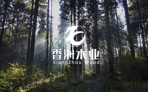 香洲木业logo设计