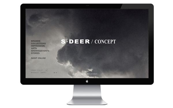 圣迪奥官网设计及后台开发