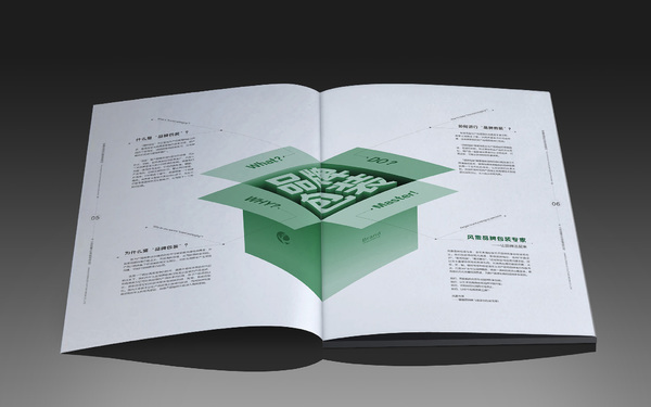 風雷傳媒畫冊設計