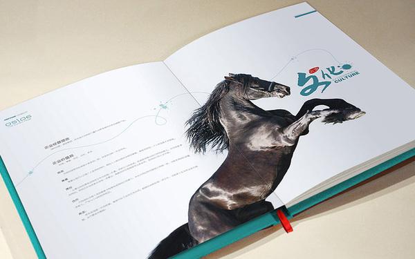 中食肽灵画册设计
