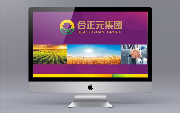 廣東合正元食品科技股份有限公司品牌設計