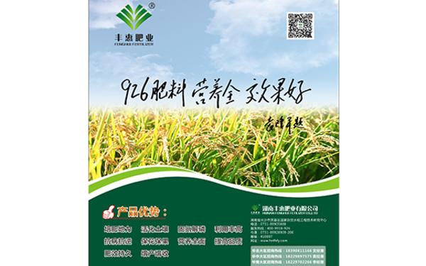 湖南丰惠肥业报纸海报设计