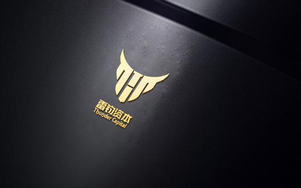 雷钧资本logo设计