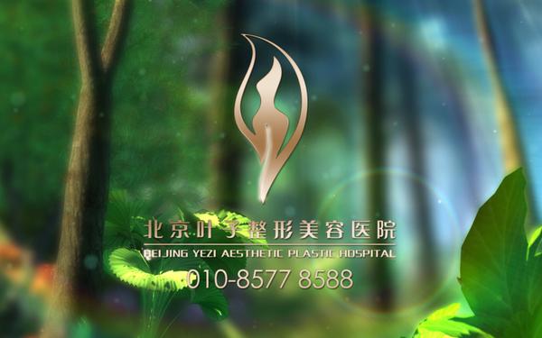 北京叶子三维动画广告