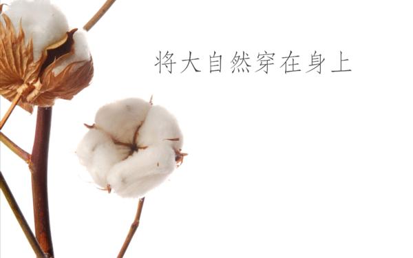 化纤协会黏胶长丝产品品牌口号