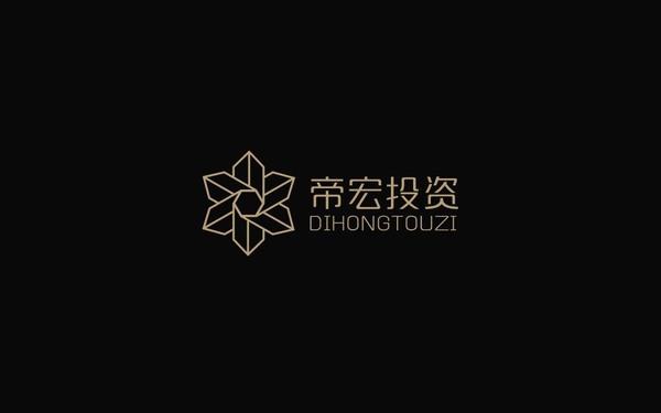 帝宏投资logo