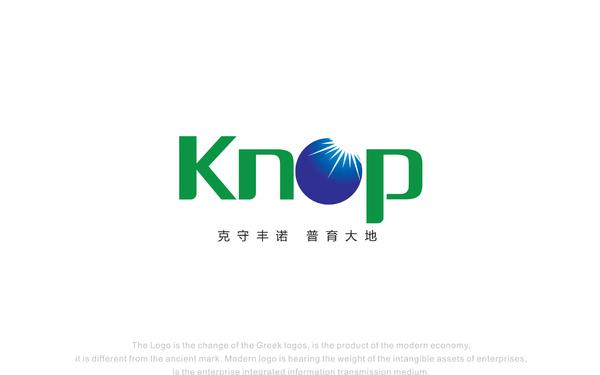 香港克诺普有限公司