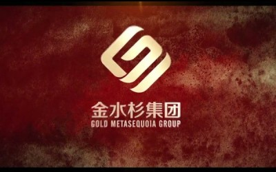 Sean Chen Director Studio