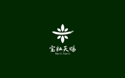 宝粒天赐logo设计