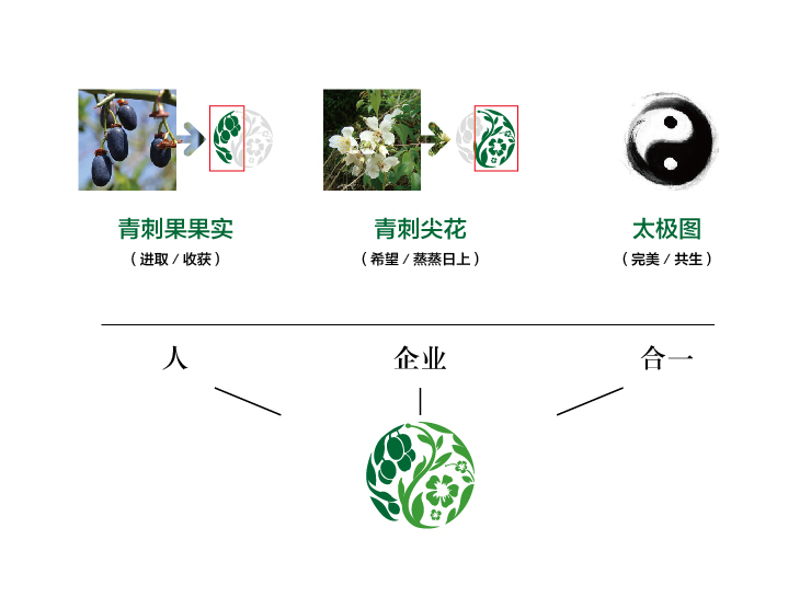 佰黎芙LOGO设计中标图1