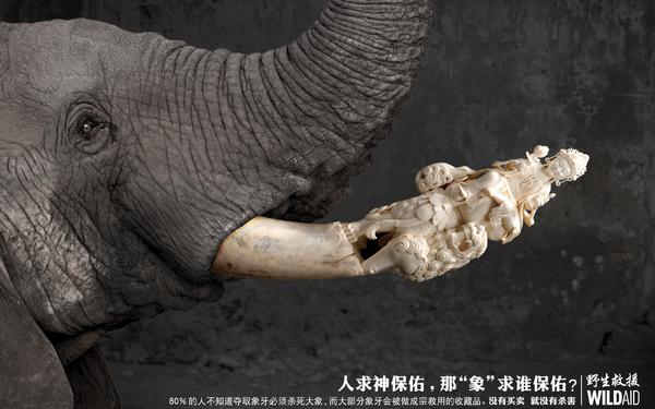 WILDAID野生救援创意海报-佛像篇