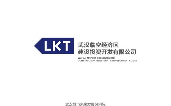 武汉临空经济区品牌logo视觉设计