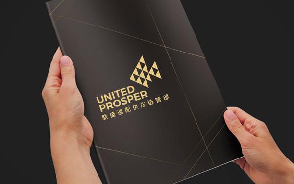 深圳联盛速配供应链管理有限公司品牌标志设计