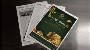 恒豐·金玉園房地產品牌廣告單頁設計