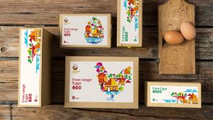鸡蛋品牌包装箱万博手机官网