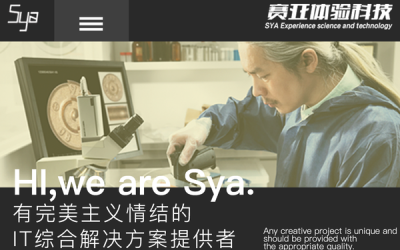 塞亚科技网页界面设计设计