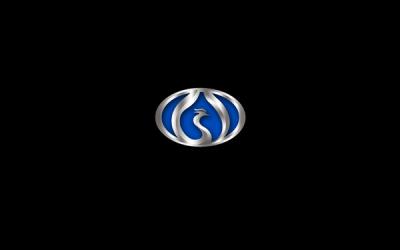 ]威玻集团凤凰房车logo设计