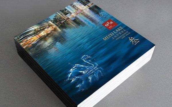 梅溪湖国际新城画册设计