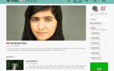小树林日报的网页设计