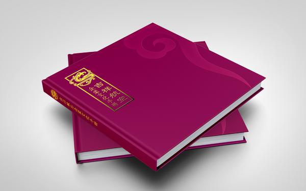 航空公司画册设计  企业画册