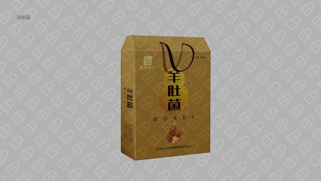 天河菌业包装设计入围方案0