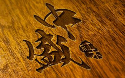 中盛红木家具logo设计
