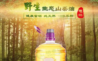 龙株山茶油的网页设计