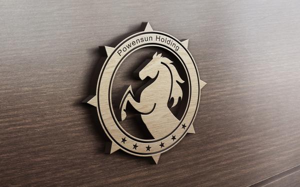 宝晟集团标志设计