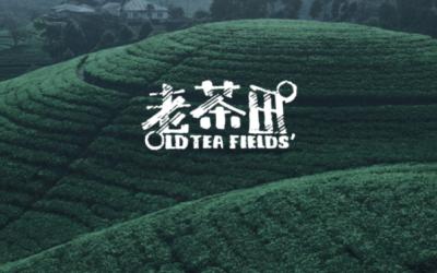 茶为古饮,古为情怀