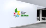 龍正高端logo设计