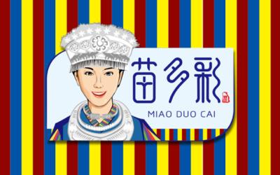 贵州苗多彩品牌-包装设计全案