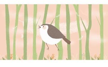 小鸟音响插画设计