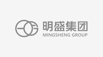明盛集團綜合服務LOGO設計