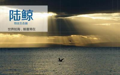 """传化物流互联网品牌""""陆鲸""""命名"""