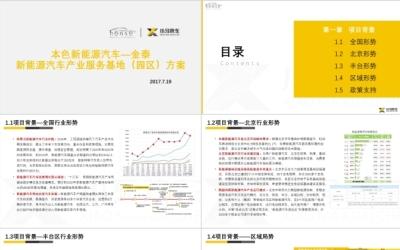 北京本色—金泰新能源汽车产业服...