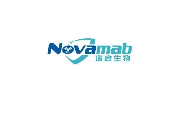 洛启生物医药科技行业logo设计