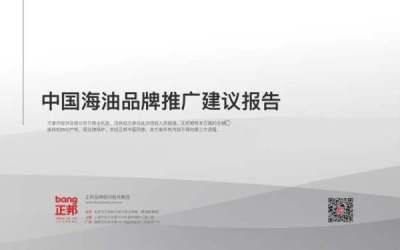 中国海油品牌推广建议报告