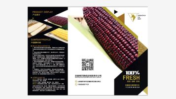 维尔康(折页)广告折页设计