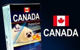 加拿大进口海狗丸