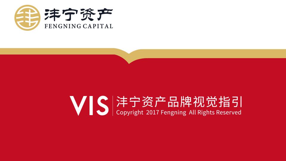 沣宁资产(VI)
