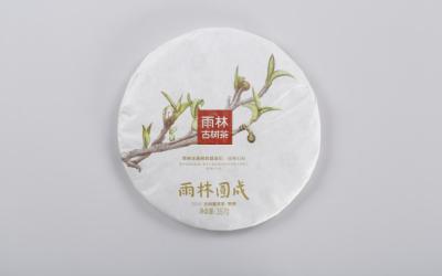 雨林古树茶