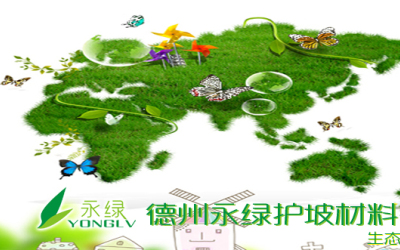 永绿护坡品牌banner设计
